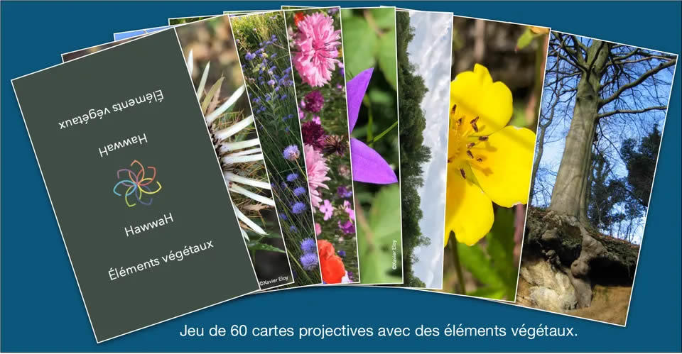 Jeu 60 cartes projectives avec éléments végétaux